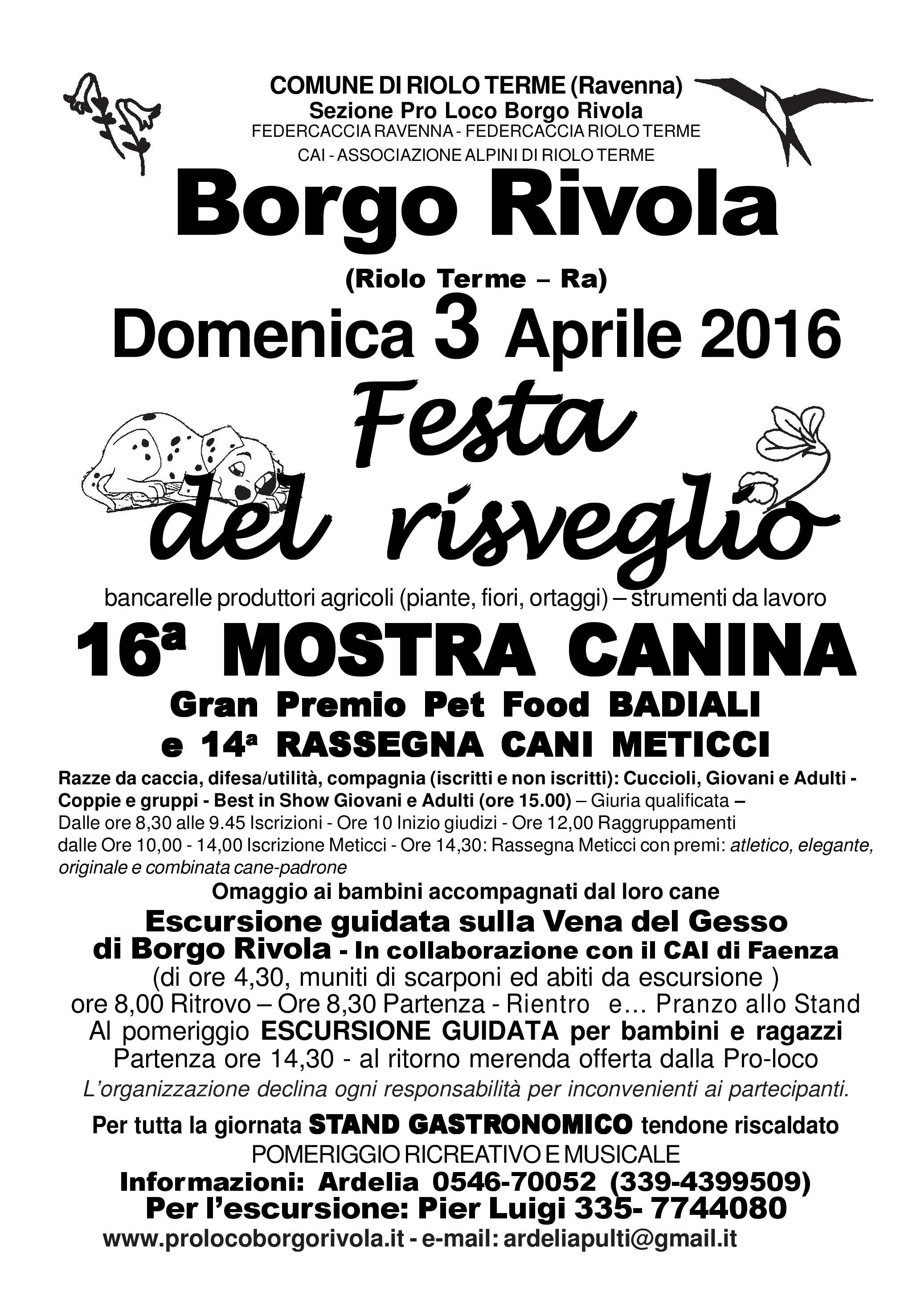Borgo Rivola, Festa del risveglio 2016
